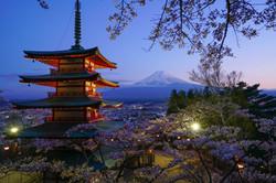 Japan_ - 214