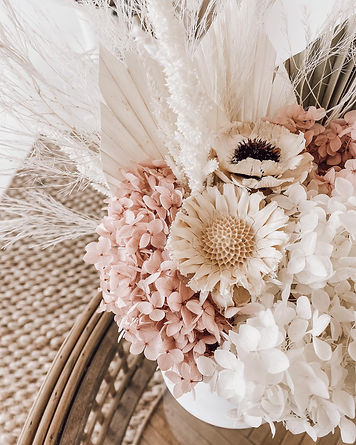 everlasting and dried flowers taree.jpg