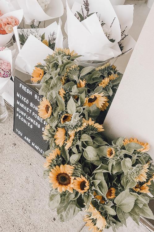 Sunflowers Wild Cosmo Flowers