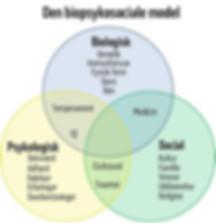 biopsykosociale-bio-psyko-social-smerte-