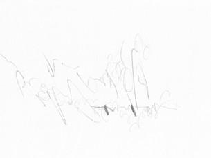 Scan_20200804 (25)..jpg