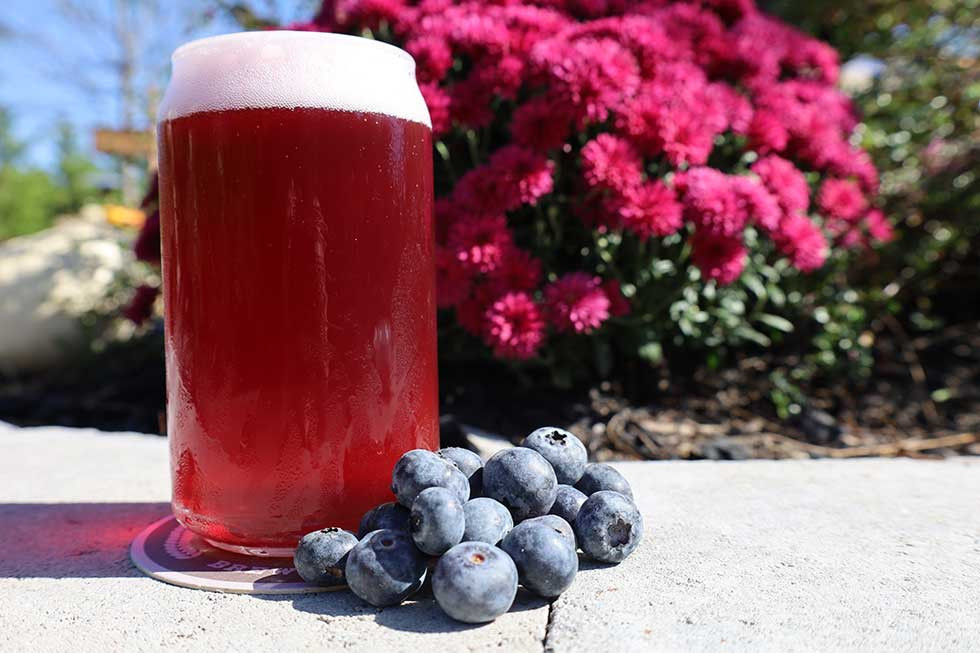 Mudhen Brewing Company Fruitie Patootie Blueberry