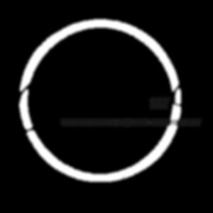 Copy of Chelsi logo.png