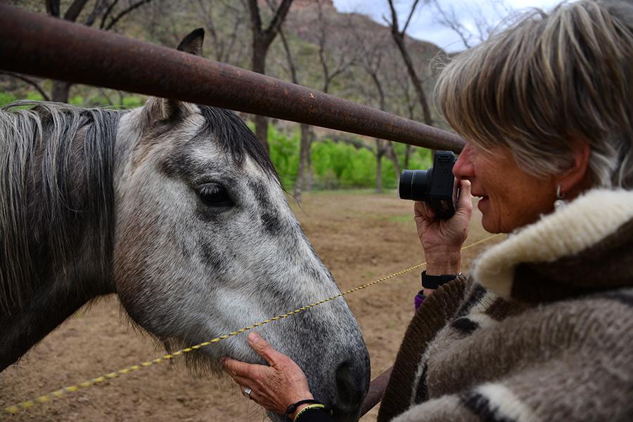 HorseWhisperer_5081.jpg