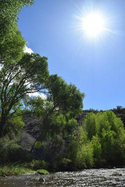 creek sun.jpg