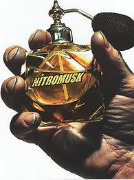 Nitromusk.jpg