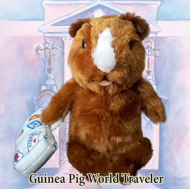 Guinea Pig around the world
