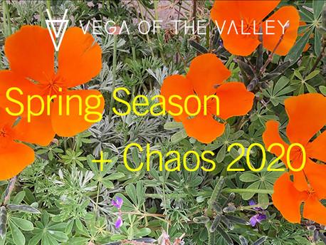 Spring Season + Chaos 2020