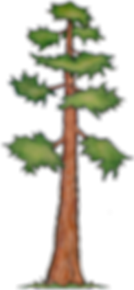 Lone Tree 08.png