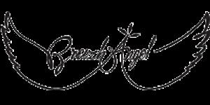 marque-breizh-angel-logo-boutique-veteme