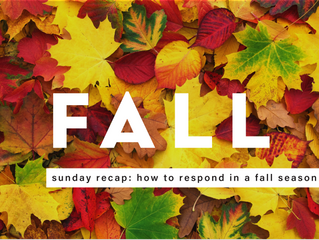 How Do You Respond to a Fall Season?