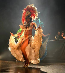 Animation événements professionnels, spectacles Brésiliens, spectacles antillais, spectacle de Salsa, danseuses et musiciens