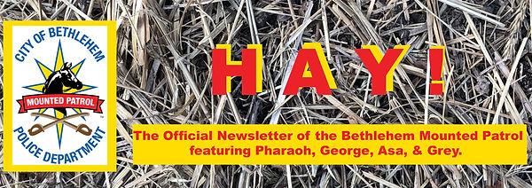 newletter header hay3.jpg