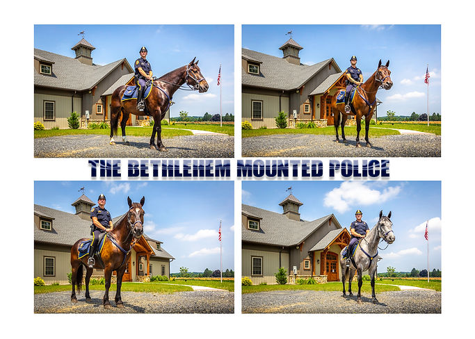 Mounted Police Collage.jpg