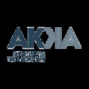 280px-Akka_baseline_logo-RVB400px.png