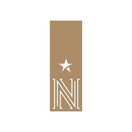 North star logo (2).png