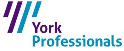 york professionals image.JPG