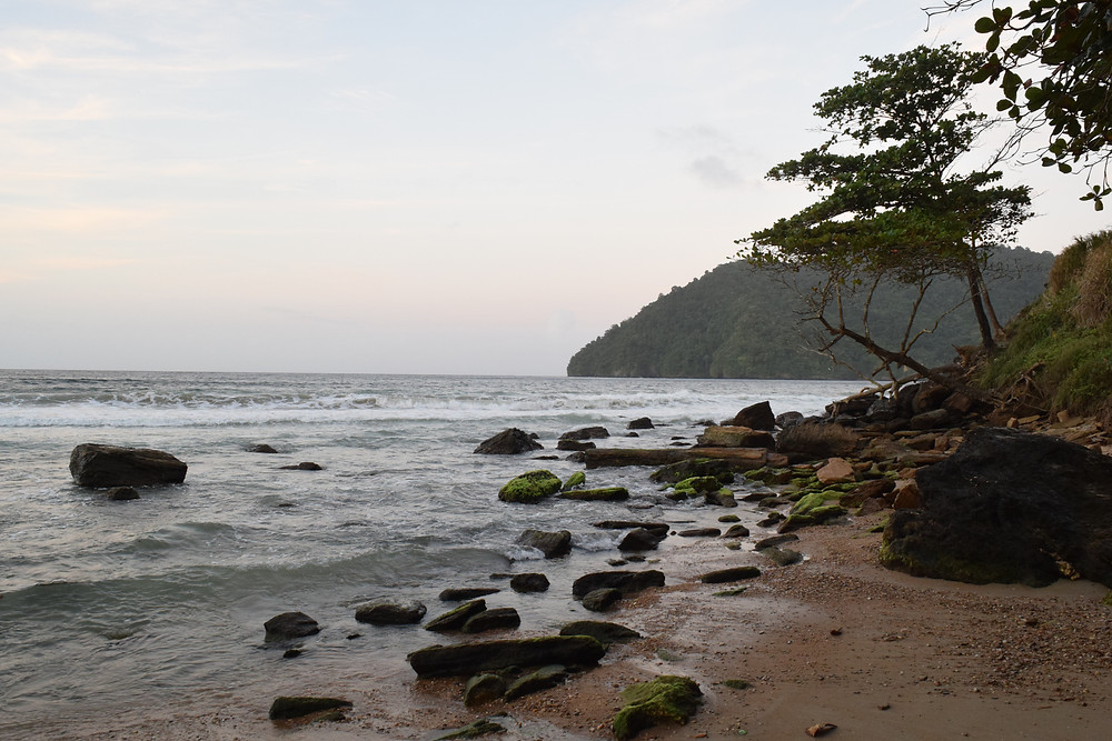 Maracas Bay, Trinidad, Sal Lavallo, 193 Journeys