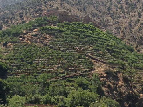 My Happy Place: Morocco's Ourika Valley of Atlas Mountains
