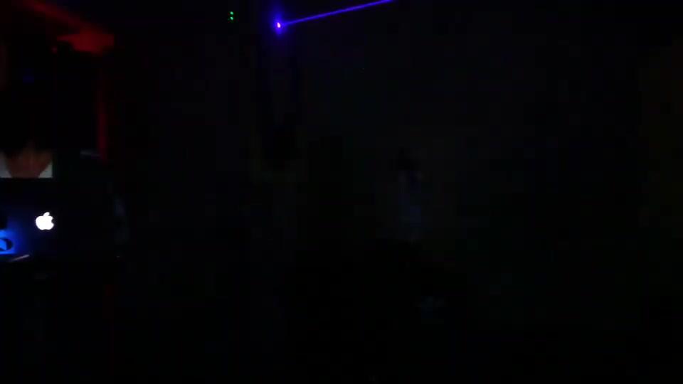 Adidas OZWEEGO x laser dye