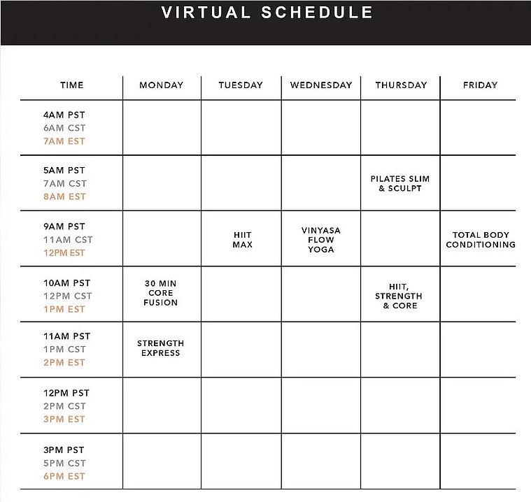 Virtual schedule.JPG