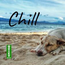 Chill podcast cover art.jpg
