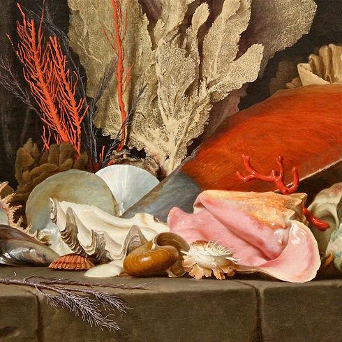 Naturaleza-Muerta-con-caracoles-y-corale