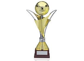 mega-cup.jpg