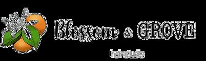 b&G logo trans.png