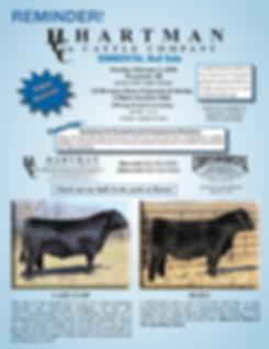 Hartman bull sale 2020