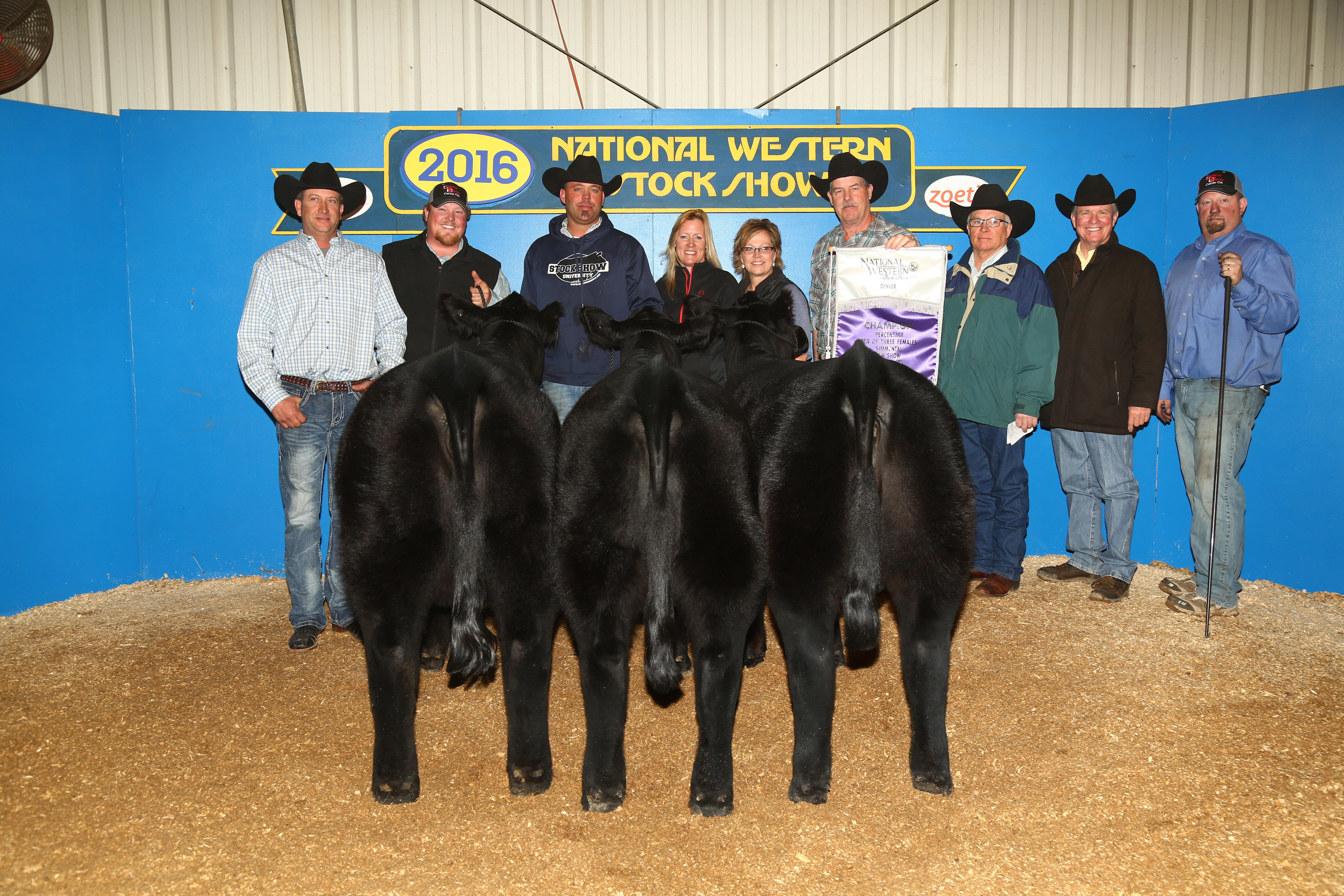 2016 NWSS Champ Pen of 3 SimAngus fe