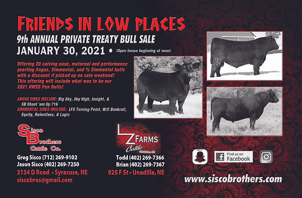 Sisco Brothers Cattle Co_21 Winter (1).j