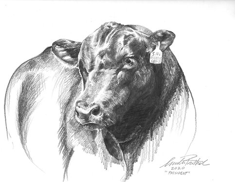 DEPOSIT for Custom Animal Portrait 9 X 12
