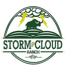 StormCloud_Logo 01 Artboard 1.jpg
