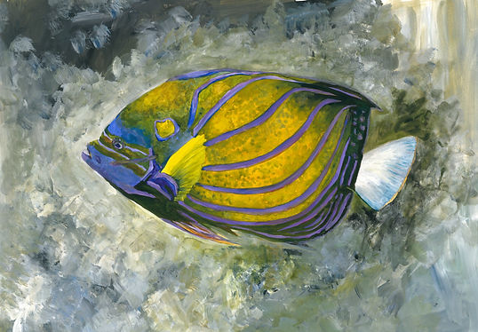 animal fish 5.jpeg