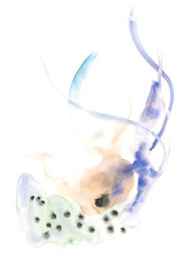 Botanical Flesh Watercolour 3.jpeg