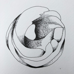 botanical monochrome 25.jpg