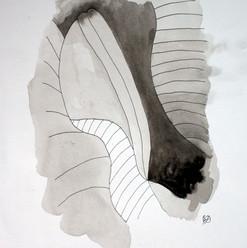 botanical monochrome 21.jpg