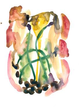 Botanical Flesh Watercolour 13.jpeg