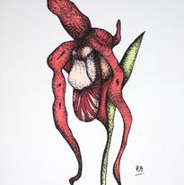 Botanical Flesh 19.jpg