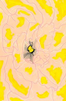 Botanical Flesh acrylic line.jpeg
