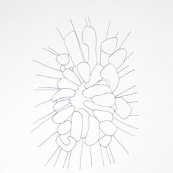 botanical monochrome 9.jpg