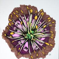 Botanical Flesh 6.jpg