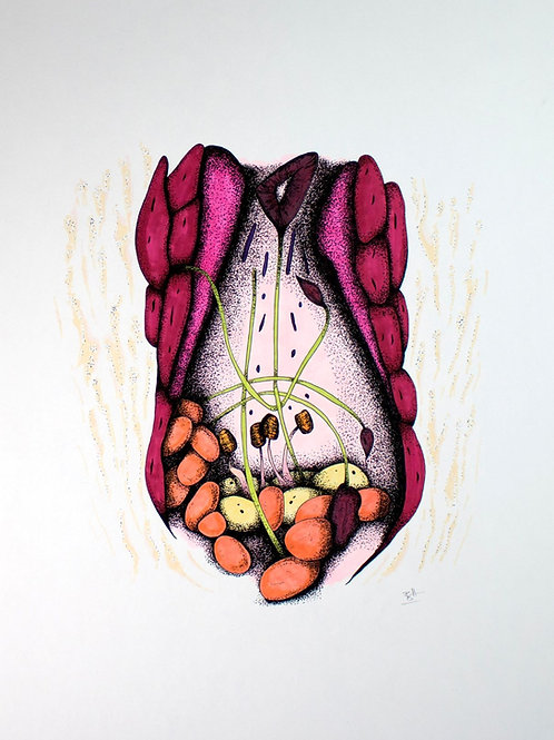 Botanical Flesh A4 Limited EditionPrint