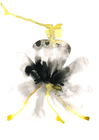 Botanical Flesh Ink 11.jpeg