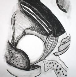 botanical monochrome 5.jpg