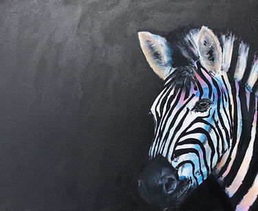 animal zebra1.jpg
