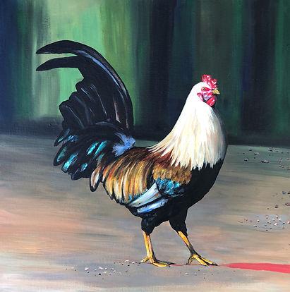 Animal rooster.JPG