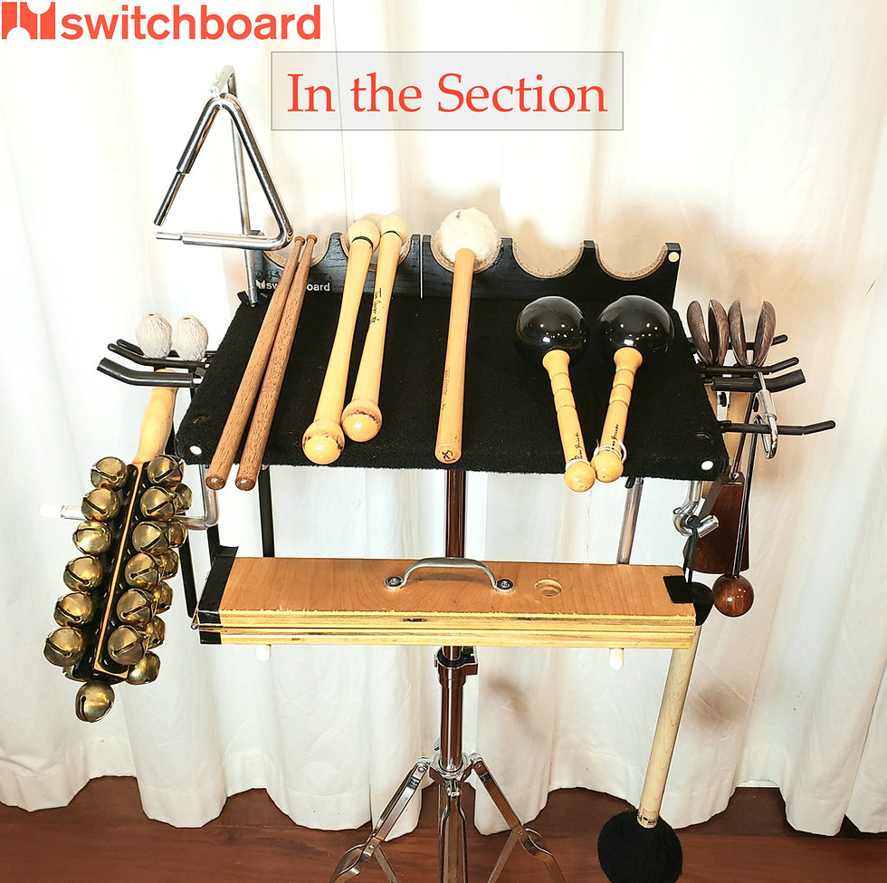 Switchboard in the Concert Percussion Section - L to R, this configuration suspends a set of sleigh bells b/t an L-hook and a Fat hook, a pair of cymbal mallets hung from 2 Skinny hooks, a small whip on 2 L-hooks (underneath), a triangle hung from a Miller Machine triangle arm via adapter, concert SD sticks, chamois BD mallets, venezuelan maracas, concert castanets and vibraslap suspended from 4 more switch hooks, and a tam-tam mallet on a J-hook.