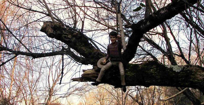 Banner Joe tree.jpg